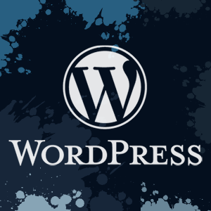Best WordPress Plugins in 2013